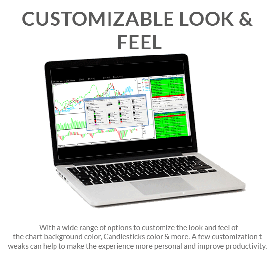 Customizable Look & Feel